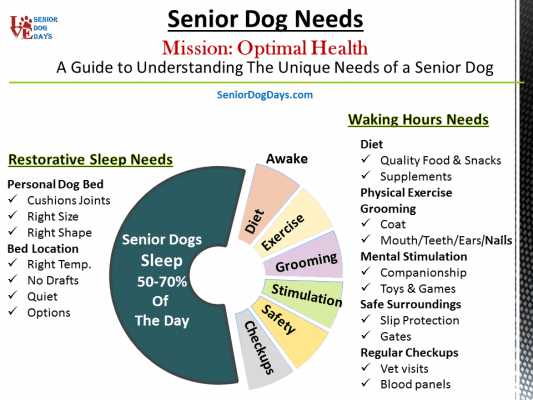 Senior Dog Needs Explained with this chart.  A senior dog sleeps 12-16 hours per day so they need a dog bed for sure. A senior dog also has specific needs when it comes to diet, exercise, grooming, stimulation, a safe home and regular checkups.