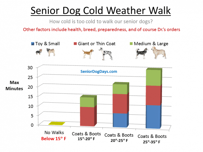 Is it too cold to walk a senior dog?  How cold is too cold to walk an older dog. This chart shows when it's too cold to walk a senior dog.