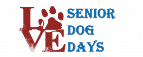 Senior Dog Days