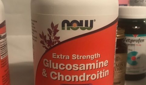 Image of Glucosamine and Chondroitin Now Brand. This is human grade but I've been giving it to my dog for joint relief since he was six years old