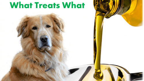 image cbd vs. hemp vs. hemp seed oil for dogs.