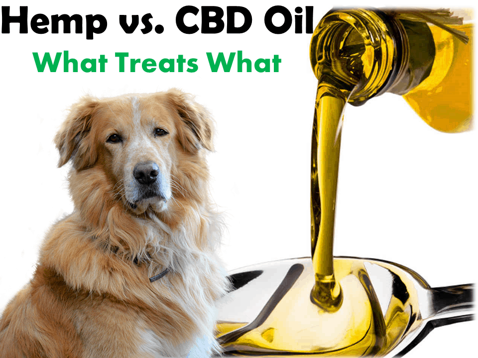 Hemp Seed Oil Vs Cbd Oil For Dogs Chart Skin Pain Anxiety Cancer