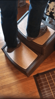 image shows pet gear steps with human standing on them to show strength
